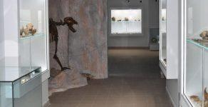 Музеят на родопския карст в Чепеларе отново отвори врати