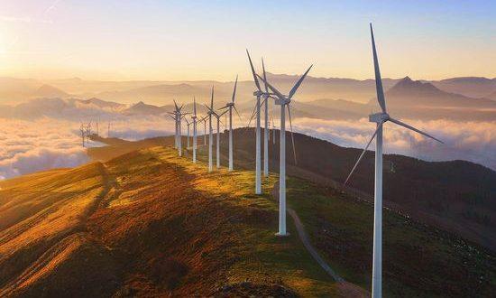 WWF: Зеленият пакт трябва да наблегне на 5 ключови аспекта