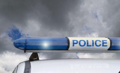 Полицията разследва смъртта на няколко кучета в района на Перелик