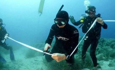 Гърция откри уникален подводен музей (ВИДЕО)