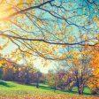 Есента настъпва на 22 септември