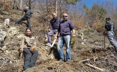 Засадиха близо 1200 фиданки край рудоземското село Чепинци
