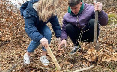 Младежи засадиха 200 фиданки край Смолян