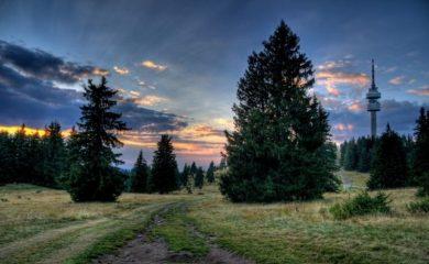 Изследвания доказват, че чистият въздух в Родопите е лечебен