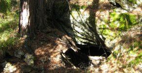 Археолози проучват пещера Чая край Чепеларе